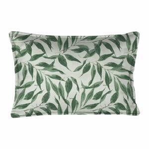 Zelený dekorativní polštář Velvet Atelier Sage Leaf, 50 x 35 cm
