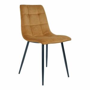 Sada 2 jídelních židlí s hořčicově žlutým potahem ze sametu House Nordic Middelfart